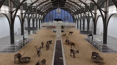 En usædvanlig udstilling og et usædvanligt natlogi: Berliner-kunstmuseet Hamburger Bahnhof har inviteret både overnattende gæster og rensdyr indenfor i udstillingsbygningen.