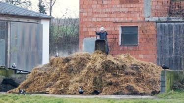 Biogas fra gylle er ikke nær så klimavenligt, som det bliver gjort til.