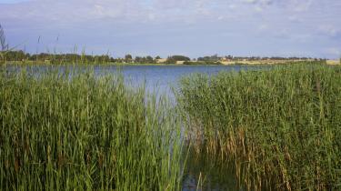 Kernen i den retslige strid med Kommissionen er EU's Vandrammedirektiv, der har som mål at bringe vandmiljøet i hele EU i 'god økologisk tilstand' i 2015. Danmark er ét af fire EU-lande, der nu stævnes for manglende indsats.