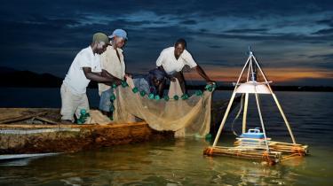 1,6 mia. mennesker i udviklingslandene lever i dag uden adgang til elektricitet. Nogle steder vil det være muligt at springe den fossile æra over og gå direkte til de bæredygtige løsninger i form af vedvarende energi tilpasset de lokale behov. Billedet er fra Lake Victoria i Kenya, hvor fiskere bruger en lampe opladet med solenergi til natligt fiskeri.