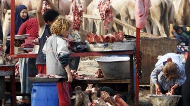 Marked. Der gøres rent i en slagterbutik i den Egyptiske by Giza op til Eid-festen. Men ellers synes den økonomiske udvikling at være sat i stå, og det bliver Vesten mødt til at forholde sig til, skriver Niall Ferguson.