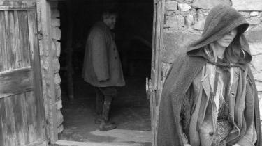 Med sine selvbevidste billedkompositioner, afgrundsdybe alvor og alenlange indstillinger ligner 'Hesten fra Torino' ofte en (umorsom) parodi på en kunstfilm.