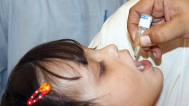 Meget tyder på, at CIA benyttede et falsk polio-vaccinations-program i Abbotabad i Pakistan som dække for at opspore og nærme sig Osama bin Laden. En paki-stansk pige får poliovaccine.