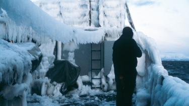 Nyt storværk opklarer gåden: Hvad laver vi egentlig i Grønland