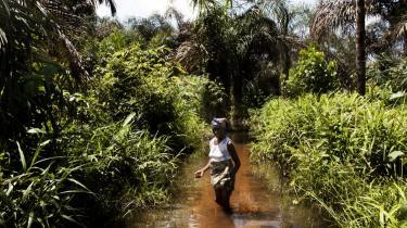 I alt 1,2 milliarder mennesker mangler ifølge FN adgang til energi. Omkring 45 procent af disse befinder sig i Afrika syd for Sahara.