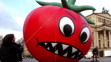 Tyske globaliseringsaktivister fra bl.a. Attac og miljø-organistationen Bund tøjrer en oppustelig tomat på Gendarmenmarkt midt i Berlin for at sætte fokus på de ukendte konsekvenser af genetiske manipulerede fødevarer.