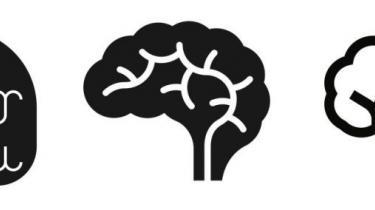Hjernen. Peter Lund Madsens bog om menneskehjernen er båret af en belæst og belærende gennemgang af alt det, forfatteren har lært på lægestudiet og i laboratoriet, men tydeligvis næsten ikke orker at referere for os andre. Det er en nærig bog