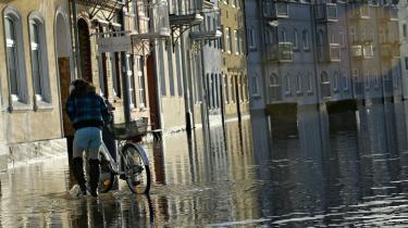 Med ProjectZero har Sønderborg kommune sat det som mål at området i 2029 skal være CO2-neutralt. Sønderborg mærkede i januar 2012 selv følgerne af klimaforandringerne, da en kraftig regn skabte oversvømmelse i byen.