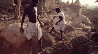 Danske virksomheder kan evt. i direkte partnerskab med folkelige foreninger være med til at løse nogle af de store udfordringer i udviklingslandene, herunder sikre fødevarer, klimatilpasning, vedvarende energi, bedre sundhed og hele opbygningen af en bæredygtig landbrugsproduktion, mener dagens kronikører.