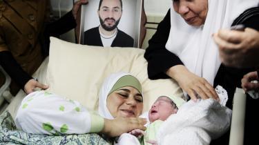 Den palæstinensiske baby, Muhanad, og hans mor i barselssengen på Vestbredden. Han er en af de tre drengebørn, der er kommet til verden takket være sæd fra faderen, der er blevet smuglet ud af fængslet og få timer efter befrugtede moderens æg i reagensglas.