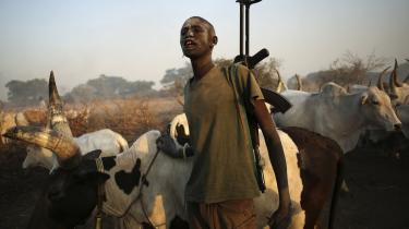 Sammenstød. En ung Dinka-hyrde leder sin flok med et AK 47-gevær over skulderen nær byen Rumbek i Sydsudan. I de seneste uger er ulmende fjendskab og rivalisering mellem landets dominerende stammer sprunget ud i fuldt flor, hvor det især har været Nuer-stammen, der har været målet for den dominerende Dinka-stamme.