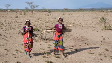 To etiopiske piger henter brænde, som der bliver stadig mindre af på grund af den globale opvarmning. Netop Etiopien er i Danmark blevet fremhævet som et af de lande, hvor klimaorganisationen GGGI har haft held til at sætte grøn vækst på dagsordenen. Eller har de?