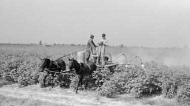 'Stoner' handler om en mand, der i slutningen af det 19. århundrede bliver født og vokser op på en gård i Missouri i USA. Som ung bliver han sendt på landbrugsskole, men dropper den planlagte levevej for i stedet at blive lærer på et mindre universitet i det amerikanske Midt-vesten.