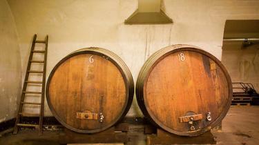 Carlsbergs ølimperium blev grundlagt på en opfindelse, der aldrig blev taget patent på. Den slags idealisme er i dag umulig for den moderne virksomhed, mener formand for Carlsbergfondet Flemming Besenbacher