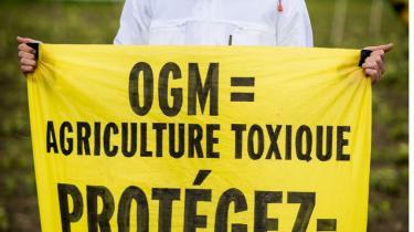 Hele gmo-området er omstridt, og i flere EU-lande er der en general modstand. Her en Greenpeace- demonstrant i Frankrig.