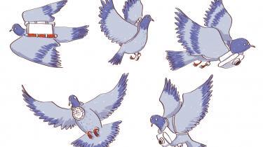 Mange af dem blev dekorerede for deres indsats under de to verdenskrige. Men 100 år efter skuddet i Sarajevo og langt ind i fiberkablernes tidsalder er deres bedrifter glemt igen. Brevduerne var den analoge krigs flyvende helte og verdens første droner
