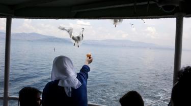 Overlevelse. Mågerne er den mest dækkende metafor for Istanbul – prosaiske som den by, de overvåger ovenfra, spottende selv det mindste henkastede sildehoved, mens det for os jordbundne handler om at have øjne i nakken for at overleve.