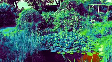 'Mellem paradisæbler og skvalderkål' er en lykkelig strøm af korte kapitler om året i en have. Men lader sig også læse som en roman, med forfatteren som hovedperson. Foto fra bogen
