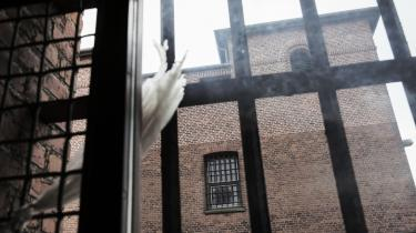 'Før i tiden skulle enhver rask dreng begå kriminalitet. Det var ligesom en del af manddomsprøven. Sådan er det ikke mere. I dag bliver kriminalitet tilsyneladende set som taberadfærd,' siger forskningschef i Justitsministeriets forskningskontor, Britta Kyvsgaard. Og derfor har blandt andet Nyborg Statsfængsel midlertidigt nedlagt pladser.