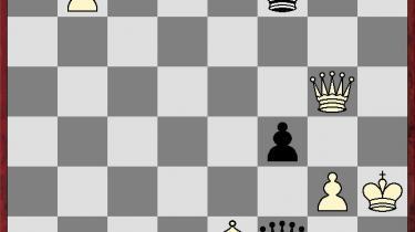 Topalov og Anand gik til tops, mens Magnus Carlsen floppede fælt