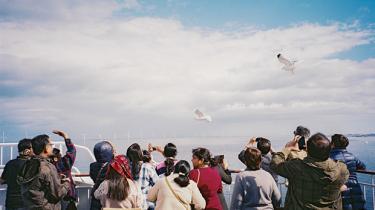Det er både billigere og hurtigere at flyve, men alligevel sejler Crown Seaways stadig turen mellem København og Oslo. Oslobåden kan tilbyde noget andet – en særlig løssluppen stemning og et fællesskab til søs. Information har tilbragt et døgn ombord