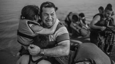 Billedet viser Laith Majid, en syrisk flygtning, der netop er ankommet til Kos via Tyrkiet i en båd med sin kone og fire børn. De var 12 i alt på en båd, der kun havde plads til fire, men endte med at komme sikkert i land efter godt to timer. Billedet er blevet et ikon på flygtningenes situation på de græske øer, hvor de etablerede nødhjælpsorganisationer ikke er tilstrækkeligt til stede.