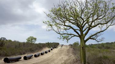Ecuadors regering vil fra næste år fjerne subsidier for 337 mio. dollar til fossile brændstoffer i Ecuador.
