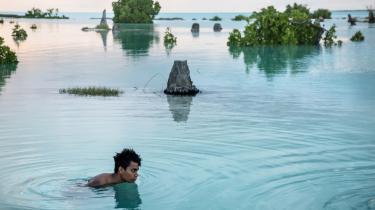 Peia Kararaua fra Kiribati i Stillehavet svømmer rundt ved højvande i et oversvømmet område af sin landsby. Kiribati er den ønation, der er mest påvirket af havstigning. Selv ved vindstille skyller vandet ind ved højvande, og beboerne må bl.a sikre deres biler ved at parkere dem på små forhøjninger.