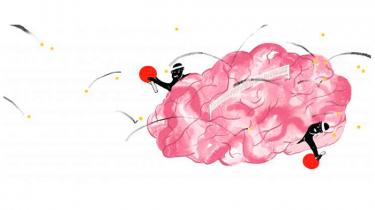 I århundreder har filosoffer og forskere været optændt af ideen om at forbedre hjernens kapacitet. Nu har en gryende videnskabelig interesse for et 150 år gammelt boldspil kastet en ny teori af sig. Den siger, at man kan blive klogere af at spille bordtennis. Men klogere på hvad?