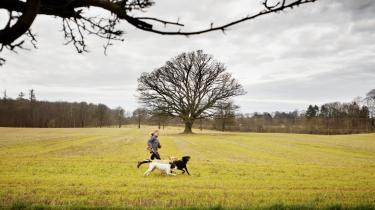 Det er langtfra sikkert, at regeringen med sin nye landbrugspakke lever op til EU's regler for særligt sårbare naturområder.