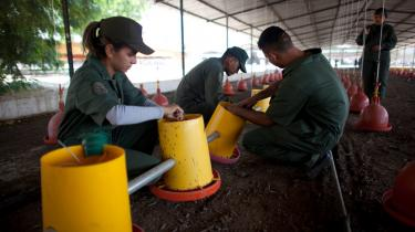 Venezuelanske soldater er blevet sendt ud i landet for at sikre fødevareproduktionen og -distributionen.
