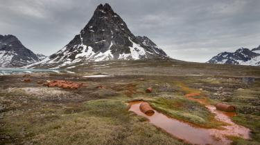 Hverken USA eller Danmark vil tage ansvar for forureningen efter amerikanske militære installationer i det grønlandske miljø. En amerikansk fotograf vil vække opinionen med billeder og underskrifter
