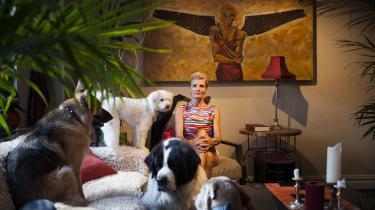 Heidi Staun Saga med sine mange adopterede hunde. Til venstre sidder narkohunden Mercy, en tidligere narkohund fra Texas.