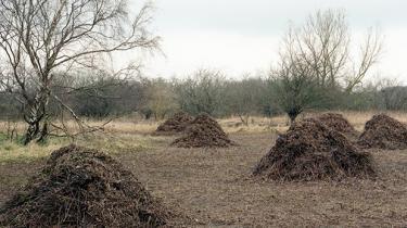 Planen om at bebygge netop dette område af Amager Fælled kan naturligvis genforhandles og ændres, og det bør den blive