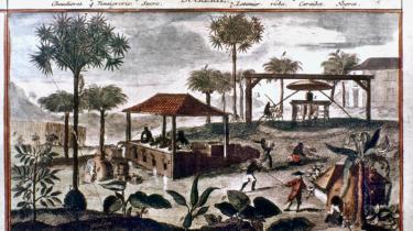 Fortællingen om Danmarks fortid som slavehandelsnation og kolonimagt er en entydig fortælling om hvid skyld. Den er på grænsen til historieforfalskning, men den er voldsomt populær