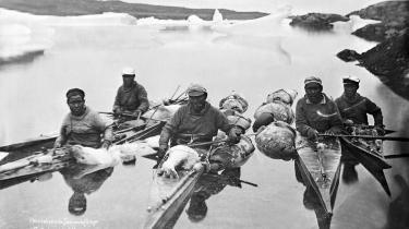 Inuitterne har i over tusind år overlevet i den barske arktiske natur. Men i dag er billedet af de »seje grønlændere«, som kun høster af naturen alt efter behov, i høj grad også en europæisk forestilling.
