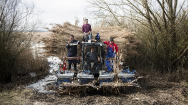 Med et årligt budget på næsten 440 milliarder kroner udgør landbrugsstøtten næsten 40 pct. af hele EU's budget. Spørgsmålet om landbrugsstøtte var afgørende i forhandlingerne, da de østeuropæiske lande kom med i EU. Her høstes siv ved Kis-Balton-søen i Ungarn.