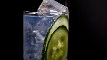Vi anbefaler naturligvis at servere sin G&T med lime og citron. Men agurk kan også gå an.