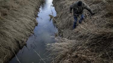 Danmarks Naturfredningsforening er blevet en smal miljøorganisation, hvor naturen er blevet væk, skriver dagens kronikør.