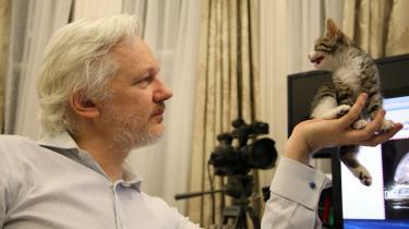 Julian Assange med en killing på den ecuadorianske ambassade i London.
