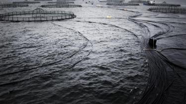 Havbrug i Storebælt ved Reersø Havn syd for Kalundborg