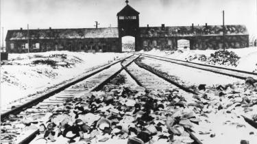 Først i det øjeblik vi tillader os selv at bruge Auschwitz som sammenligning og forstår, at Auschwitz fandt sted i historien, kan vi forstå vores egen tid – og dermed forskelle og ligheder til det, der sker i dag