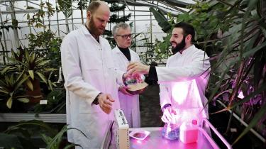Den stigende brug af eksterne donationer begrænser forskningen – ikke kun, fordi giver har forventninger, men også fordi modtagerne forventes at betale en god del af regningen for diverse forskningsprojekter. Dagens kronikør opfordrer til, at man på universitetet redegør for sin strategi for at sikre forskningsfriheden. På billedet sesforskere fra Københavns Universitet, der sidste år kunne afsløre, at de havde opdaget et soldrevet naturfænomen, der hurtigt kan lave planteaffald om til grønt biobrændstof. Et projekt, der blev finansieret af Den Frie Forskningsfond.