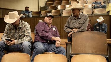 Ude på landet i Texas stemte vælgerne overvældende på Donald Trump i 2016. Men præsidentens respektløse stil og de manglende resultater har vakt forundring og uro. Her ses nogle købere på en kvægauktion i byen Groesbeck.