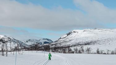 Vi er i Norge, min kæreste og jeg og vores to døtre på fem og syv. Det er første gang, at de er på ski, og nu har vi været her nogle dage, så de har fået lært det basale. Og det er dér i sporet på vej op af et bjerg, der i øjeblikket forekommer uendeligt, at jeg kan høre det. Det, jeg kan høre, er stilheden. Lyden af ingenting