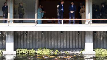 'Big Stupid Baby Dumps Load Of Fish Food On Japanese Koi Pond,' skrev netmagasinet Jezebel, og snart red de etablerede medier også med på 'dumme Trump'-bølgen