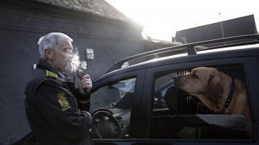 Broholmeren Congo er en 'familiehund', siger landbetjent Viggo Nielsen. Alligevel er han altid med i bilen, når Viggo Nielsen patruljerer.
