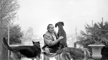 Selv om Adolf Hitlers 'Mein Kampf' blev genoptrykt i Frankrig så sent som i marts sidste år, mener nogle historikere, at der en stor forskel på et historisk dokument som dette og Célines rablende had. Her ses forfatteren i sin have med sine hunde omkring 1955.