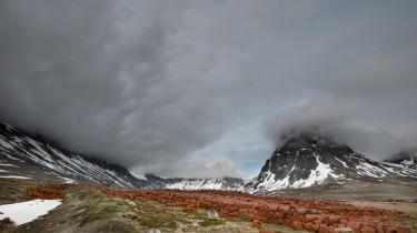Den amerikanske fotograf Ken Bower har sat fokus på USA's militære affald i Grønland. Her er det efterladte olietønder ved Ikateq Fjord, 50 km nordøst for Tasiilaq, Østgrønlands største by – engang bedre kendt som Ammassalik.