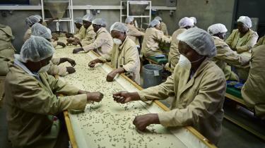 Coop har med sit kafferisteri i Kenya og et intenst samarbejde med 75.000 kaffebønder om uddannelse givet bønder en markant fremgang i indtjeningen.